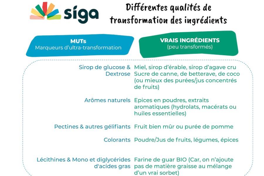 Savoir différencier les Vrais ingrédients des autre dans un sorbet
