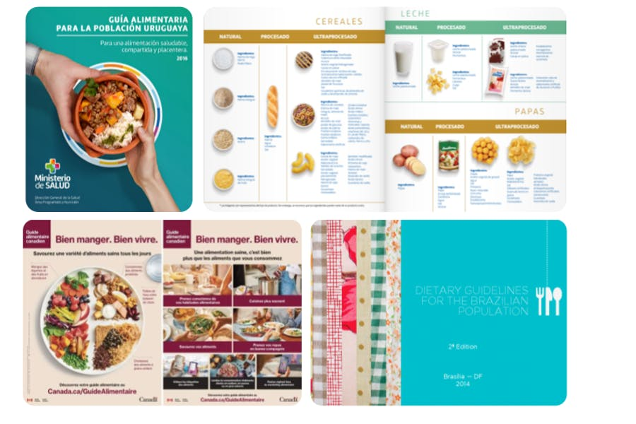 guides alimentaires basés sur la classification NOVA