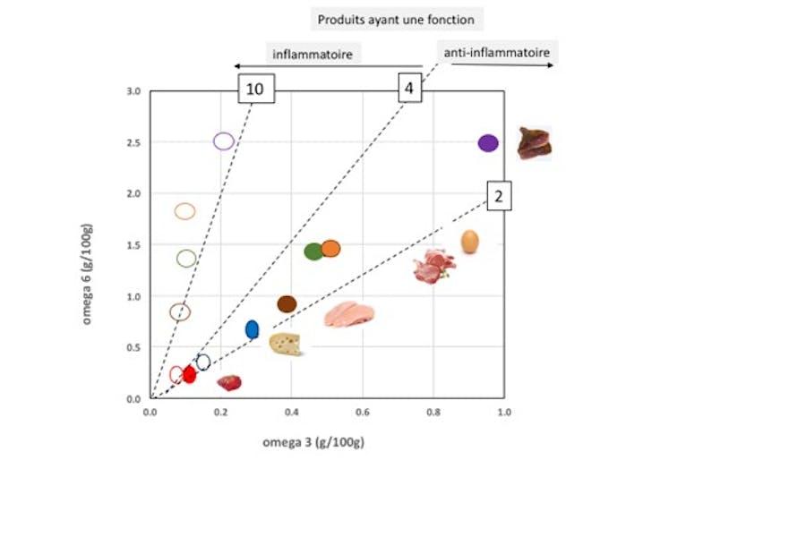 graphique présentant la proportion d'oméga 3 et d'oméga 6 des produits animaux, donnant leur valeur santé