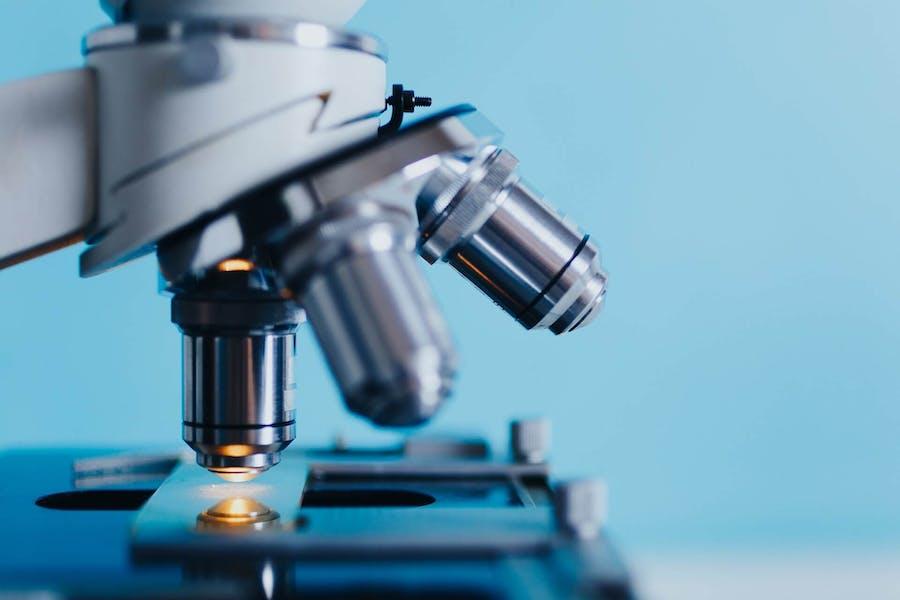 Une alimentation enrichie en fibres comme l'inuline, peut développer un hépatocarcinome chez le rat.
